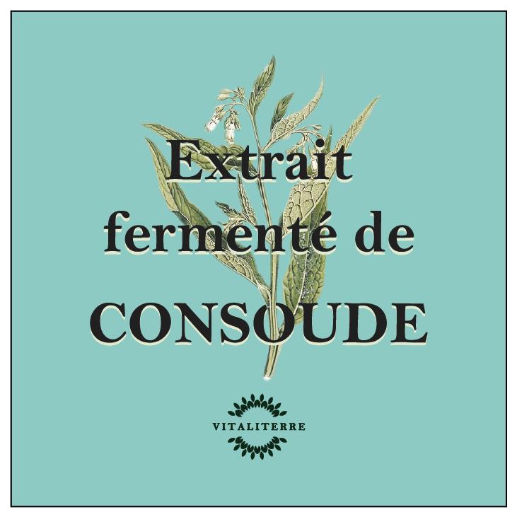 Extrait fermenté consoude
